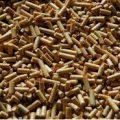 قیمت کنجاله سویا آرژانتین پرک